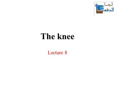 The knee Lecture 8. Knee joint The knee joint is the largest synovial joint in the body. It consists of: a)the articulation between the femur and tibia,