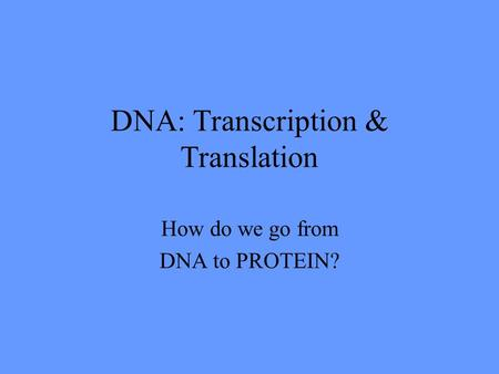 DNA: Transcription & Translation How do we go from DNA to PROTEIN?