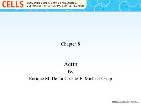 Chapter 8 Actin By Enrique M. De La Cruz & E. Michael Ostap.