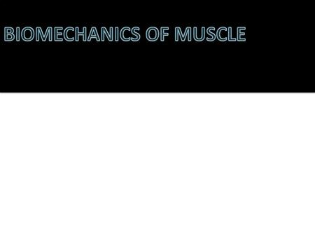 OBJECTIVES At the end of this lecture the student should be able to: Define different types of muscles Enumerate cellular organization of human skeletal.