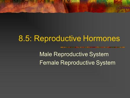 8.5: Reproductive Hormones Male Reproductive System Female Reproductive System.