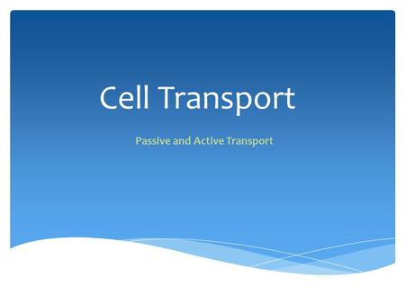 Cell Transport Passive and Active Transport. 1.All cells have a cell membrane a.Functions: o Controls what enters and exits the cell o Provides protection.