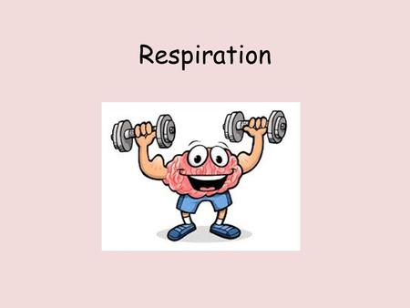 Respiration. Think, pair, share The word equation for respiration. Where aerobic respiration takes place in the cell. Why do cells need energy?