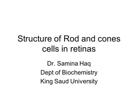 Structure of Rod and cones cells in retinas Dr. Samina Haq Dept of Biochemistry King Saud University.
