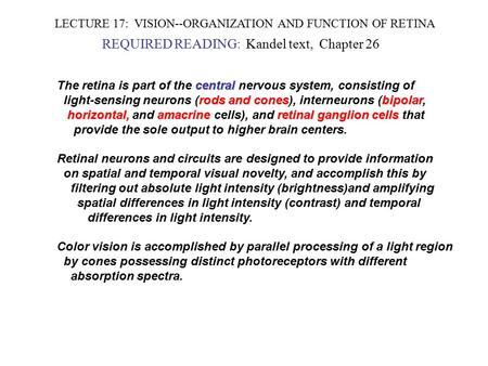 LECTURE 17: VISION--ORGANIZATION AND FUNCTION OF RETINA REQUIRED READING: Kandel text, Chapter 26 central The retina is part of the central nervous system,