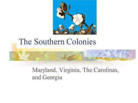 The Southern Colonies Maryland, Virginia, The Carolinas, and Georgia.