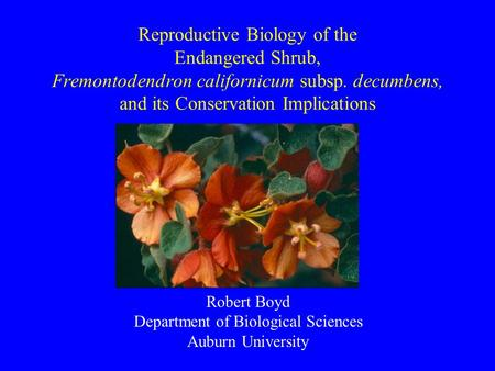 Reproductive Biology of the Endangered Shrub, Fremontodendron californicum subsp. decumbens, and its Conservation Implications Robert Boyd Department of.