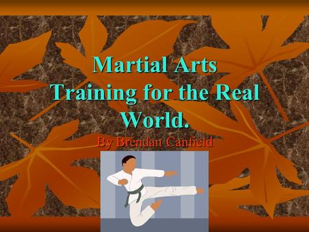 Martial Arts Training for the Real World. By Brendan Canfield.