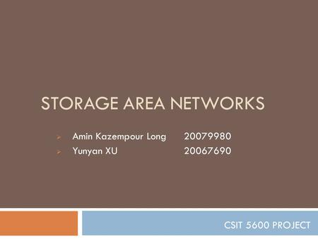 STORAGE AREA NETWORKS  Amin Kazempour Long20079980  Yunyan XU 20067690 CSIT 5600 PROJECT.