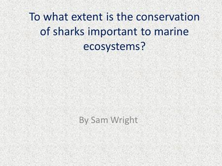 To what extent is the conservation of sharks important to marine ecosystems? By Sam Wright.