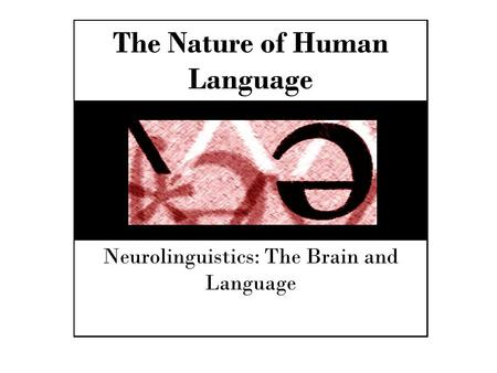 The Nature of Human Language Neurolinguistics: The Brain and Language.