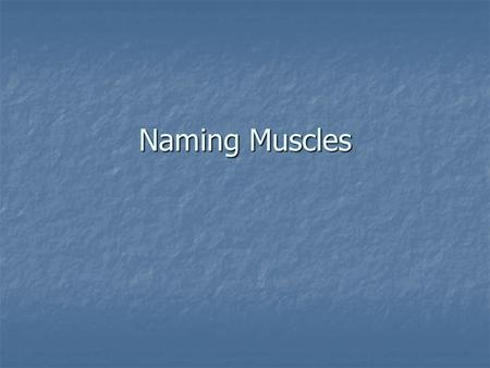 Naming Muscles. Muscles causing movement… Skeletal Muscle – an organ made of several different types of tissue including muscle tissue, vascular tissue.