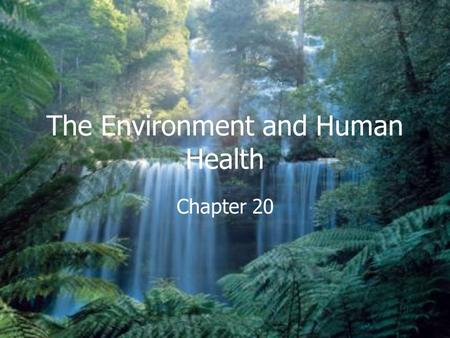 The Environment and Human Health Chapter 20. I. Pollution and Human Health A.Environmental Effects on Health 1. Pollution causes illness in two many ways.