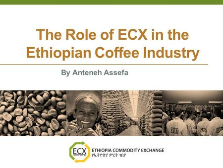 The Role of ECX in the Ethiopian Coffee Industry By Anteneh Assefa.