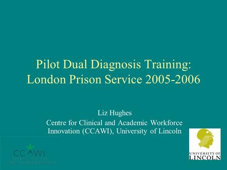 Pilot Dual Diagnosis Training: London Prison Service 2005-2006 Liz Hughes Centre for Clinical and Academic Workforce Innovation (CCAWI), University of.