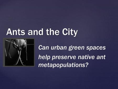 { Ants and the City Can urban green spaces help preserve native ant metapopulations?