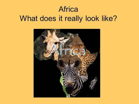 Africa What does it really look like?