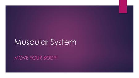 Muscular System MOVE YOUR BODY!.