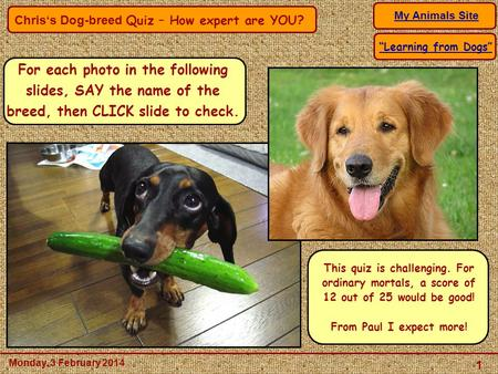 "Chris's Dog-breed Quiz – How expert are YOU? My Animals Site 1 Monday, 3 February 2014 ""Learning from Dogs"" For each photo in the following slides, SAY."