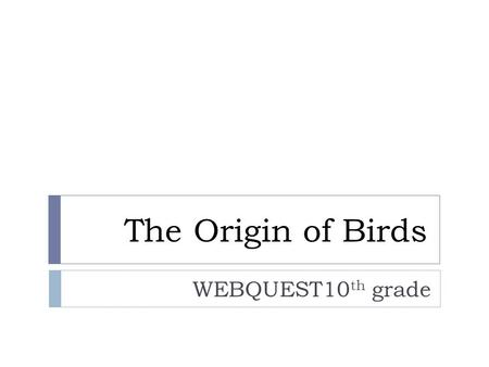 The Origin of Birds WEBQUEST10 th grade. Index  Background Information Background Information  Introduction Introduction  Task Task  Resources Resources.