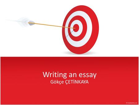 Personal Opinion Essays (Examples)