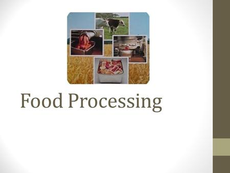 Food Processing. Road map- this meal from start to your kitchen table Small group assignment.