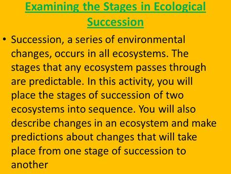 Examining the Stages in Ecological Succession