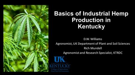 Basics of Industrial Hemp Production in Kentucky D.W. Williams Agronomist, UK Department of Plant and Soil Sciences Rich Mundell Agronomist and Research.