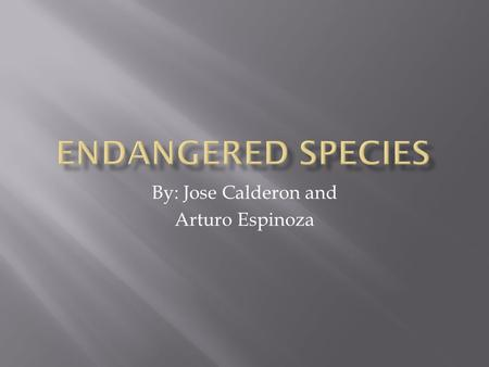 By: Jose Calderon and Arturo Espinoza.  Definition: An endangered species is a native species that faces a significant risk of extinction in the near.