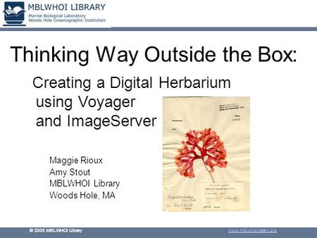 © 2005 MBLWHOI Library www.mblwhoilibrary.org Thinking Way Outside the Box: Maggie Rioux Amy Stout MBLWHOI Library Woods Hole, MA Creating a Digital Herbarium.