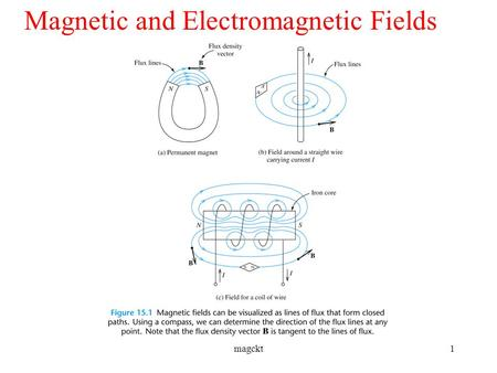 Magnetic and Electromagnetic Fields