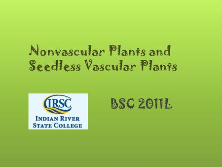Nonvascular Plants and Seedless Vascular Plants BSC 2011L.