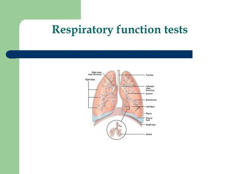 Respiratory function tests. Lung anatomy and physiology Lungs consist of – Airways – Alveoli.