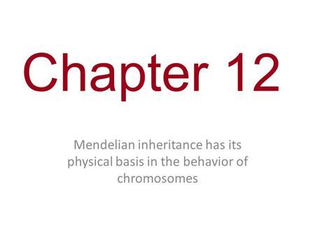 Chapter 12 Mendelian inheritance has its physical basis in the behavior of chromosomes.