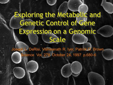Exploring the Metabolic and Genetic Control of Gene Expression on a Genomic Scale Joseph L. DeRisi, Vishwanath R. Iyer, Patrick O. Brown Science Vol. 278.