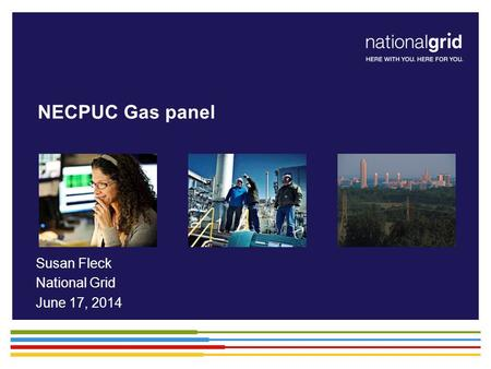 NECPUC Gas panel Susan Fleck National Grid June 17, 2014.