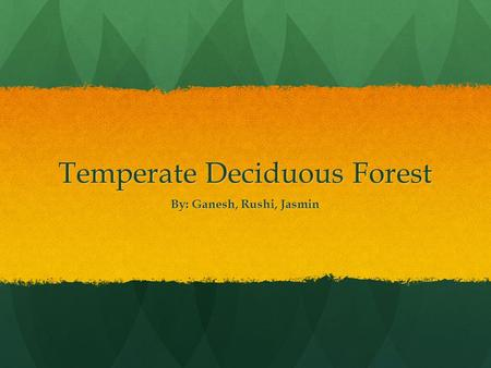 Temperate Deciduous Forest By: Ganesh, Rushi, Jasmin.
