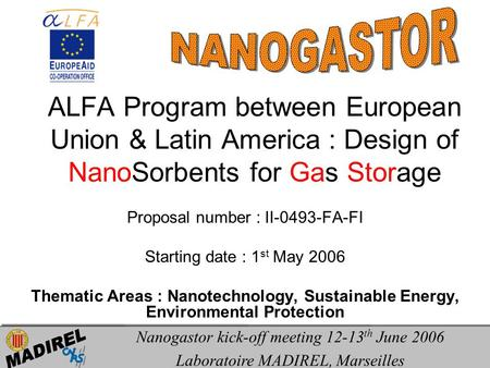 ALFA Program between European Union & Latin America : Design of NanoSorbents for Gas Storage Proposal number : II-0493-FA-FI Starting date : 1 st May 2006.