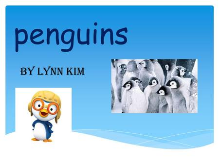 Penguins By Lynn Kim. blue penguins They are the smallest Penguins on earth and Grow up to 1ft. they live in caves, rock crevices, and under logs. Penguin.