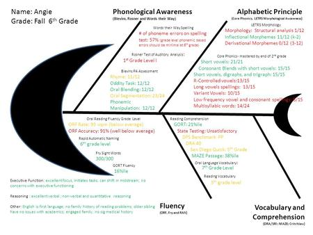 Phonological Awareness (Blevins, Rosner and Words their Way) Alphabetic Principle (Core Phonics, LETRS Morphological Awareness) Vocabulary and Comprehension.