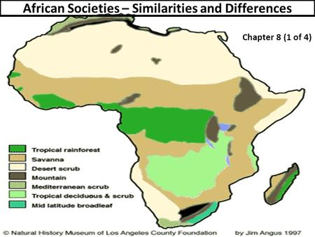 African Societies – Similarities and Differences Chapter 8 (1 of 4)