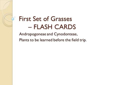 First Set of Grasses – FLASH CARDS