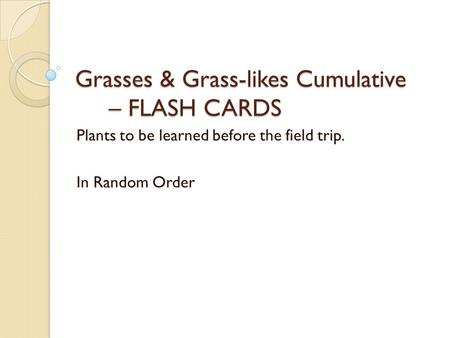 Grasses & Grass-likes Cumulative – FLASH CARDS Plants to be learned before the field trip. In Random Order.