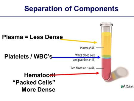 "Separation of Components Plasma = Less Dense Hematocrit ""Packed Cells"" More Dense Platelets / WBC's."