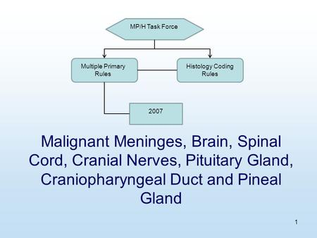 1 Malignant Meninges, Brain, Spinal Cord, Cranial Nerves, Pituitary Gland, Craniopharyngeal Duct and Pineal Gland MP/H Task Force Multiple Primary Rules.