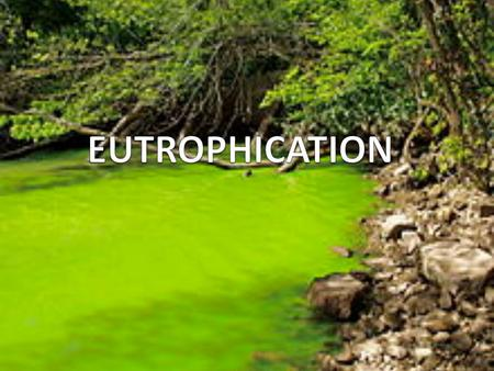 INTRODUCTION Eutrophication is a natural phenomenon in which the water becomes green and degraded. It is a natural process which became a problem because.
