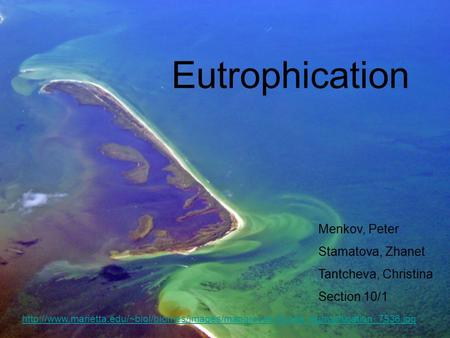 Eutrophication  Menkov, Peter Stamatova, Zhanet Tantcheva, Christina.