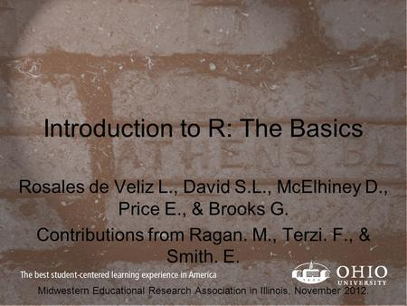 Introduction to R: The Basics Rosales de Veliz L., David S.L., McElhiney D., Price E., & Brooks G. Contributions from Ragan. M., Terzi. F., & Smith. E.