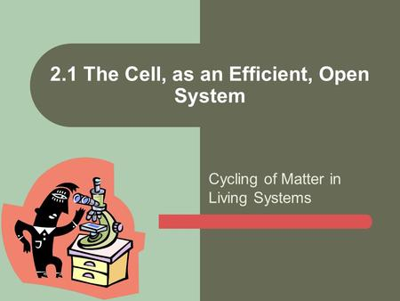 2.1 The Cell, as an Efficient, Open System