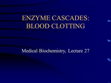 ENZYME CASCADES: BLOOD CLOTTING Medical Biochemistry, Lecture 27.